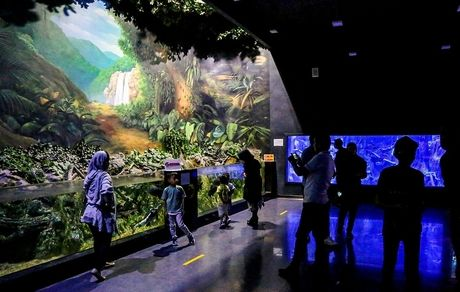 بزرگترین تونل آکواریوم کشور+ تصاویر