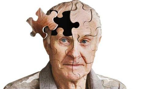 نفش تغذیه در ابتلا به آلزایمر