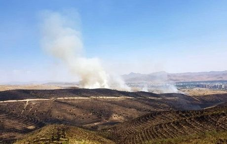 پوششهای گیاهی ارتفاعات تهران مستعد آتشسوزی است