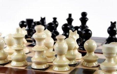 سرمربی هلندی شطرنج رفت!