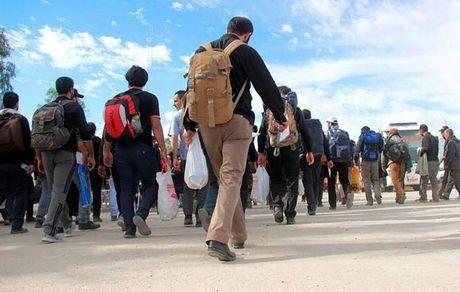 نکاتی برای پیادهروی اربعین