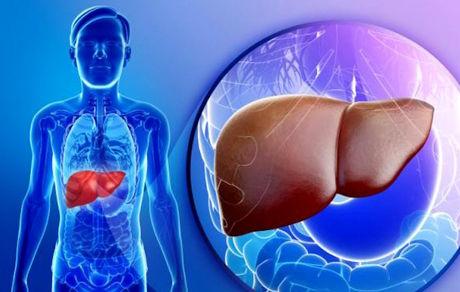 افزایش بیش از حد آهن عامل بیماریهای کبد و اضافهوزن است