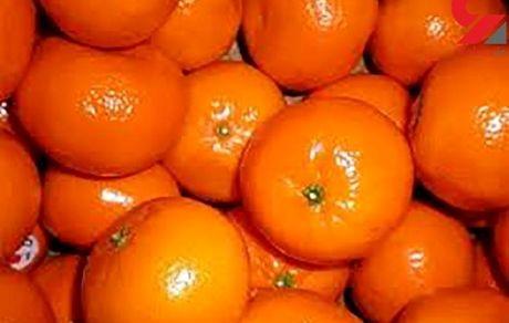 ماجرای واردات 10 تریلر نارنگی سمی چیست؟