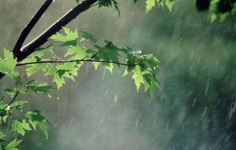 زمان آغاز بارندگیها در کشور