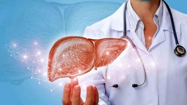 مراحل تشخیص و درمان کبد چرب