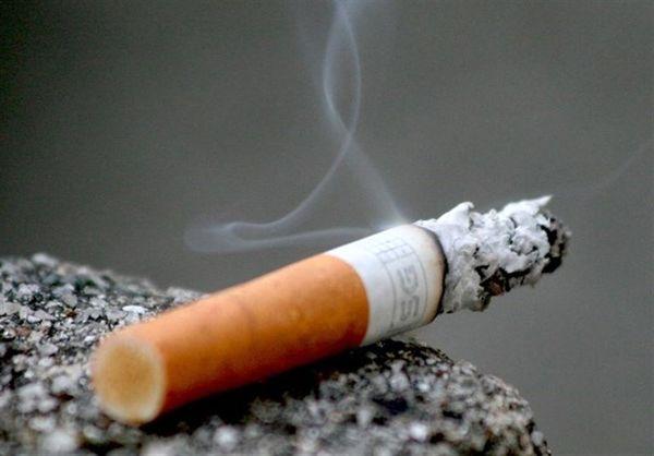 مافیای سیگار مانع دریافت مالیات