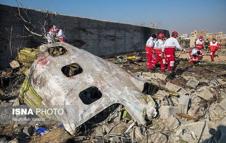 مسافران هواپیمای اوکراینی قربانی چه چیزی شدند؟