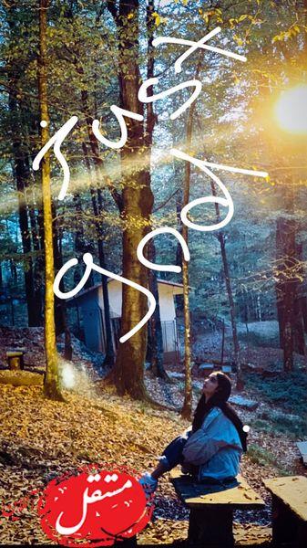 جنگل نوردی الهه حصاری در پاییز + عکس