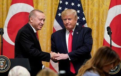 من هوادار پروپاقرص اردوغان هستم!