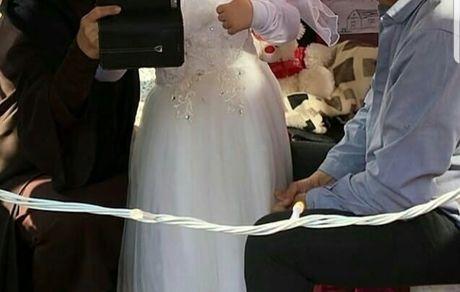 داور عصر جدید و رضا کیانیان در کنار عروس کوچولو + عکس
