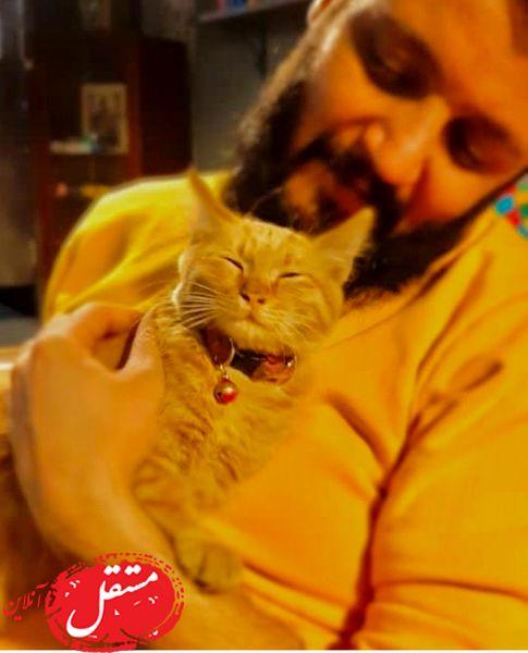 گربه بامزه آقای بازیگر + عکس