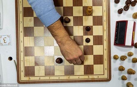 برگزاری مسابقات شطرنج برق آسای آماتورهای ایران در زنجان