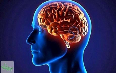 خشکی مغز را بشناسید