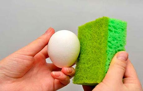 چگونه تخم مرغ را ضدعفونی کنیم؟