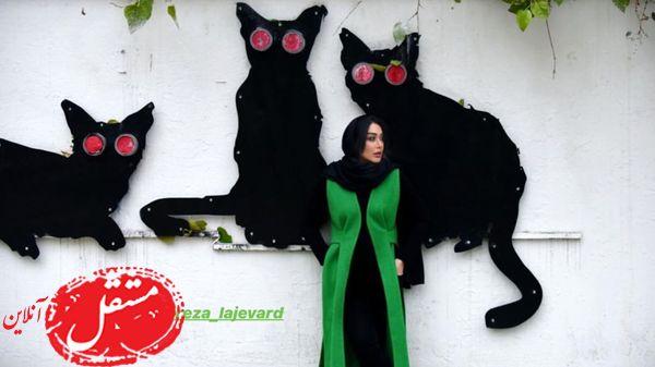 گربه های عظیم الجثه سارا منجزی پور! + عکس