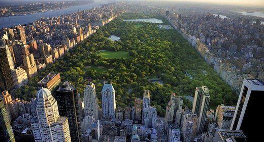 کدام شهرهای امریکا خانههای لوکستری دارند؟